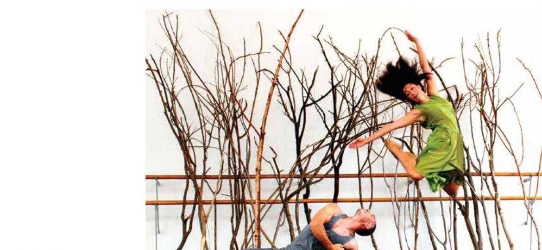 Cultura y Tiempo Libre. Informe Anual 2012
